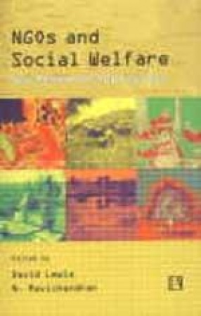 NGOs and Social Welfare: New Research Approaches