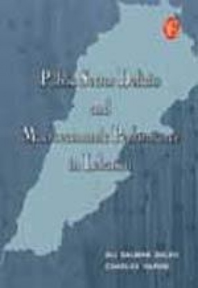 Public Sector Deficits and Macroeconomic Performance in Lebanon