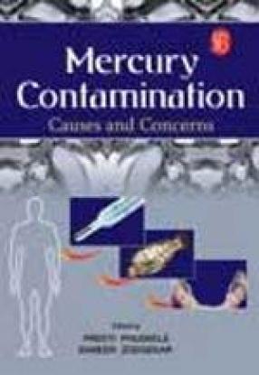 Mercury Contamination: Causes and Concerns