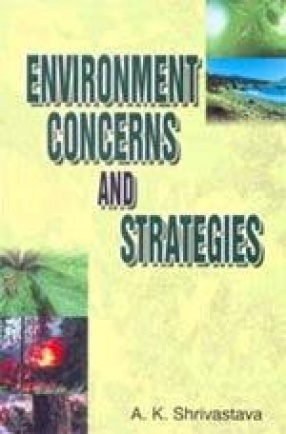 Environment Concerns and Strategies