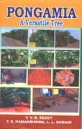 Pongamia: A Versatile Tree
