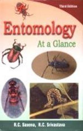 Entomology: At a Glance