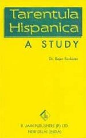 Tarentula Hispanica