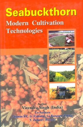 Seabuckthorn: Modern Cultivation Technologies
