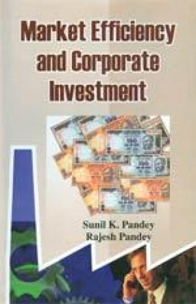 Market Efficiency and Corporate Investment