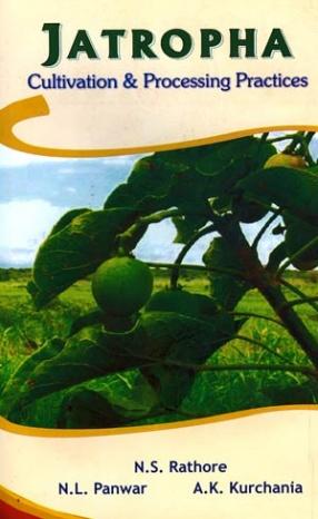 Jatropha: Cultivation & Processing Practices
