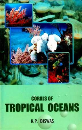 Corals of Tropical Oceans