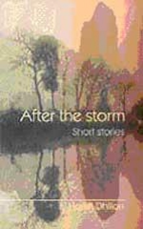 After the Storm: Short Stories