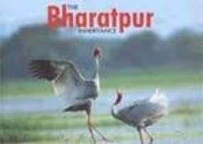 The Bharatpur Inheritance