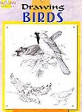 Drawings Birds