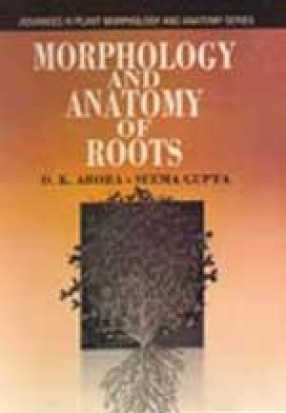 Morphology and Anatomy of Roots
