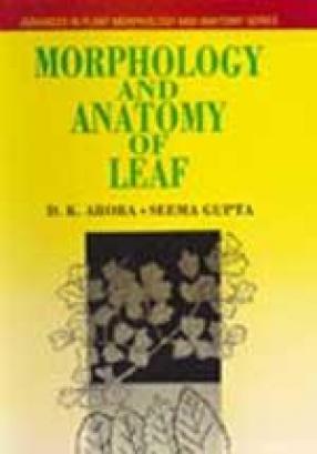 Morphology and Anatomy of Leaf