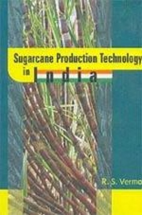 Sugarcane Production Technology in India