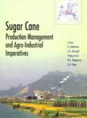 Sugar Cane: Production Management and Agro-Industrial Imperatives