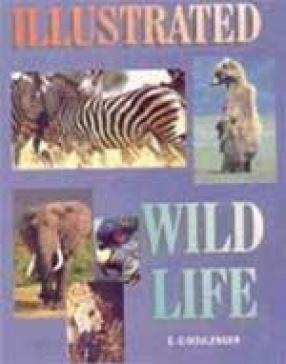 Illustrated Wild Life
