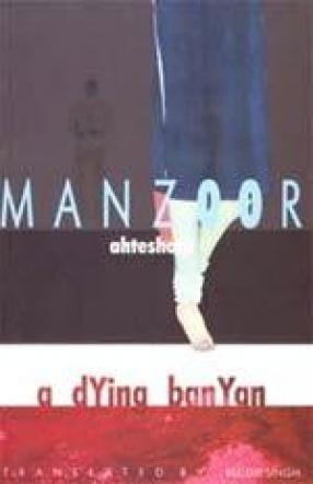 A Dying Banyan