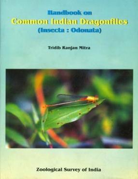 Handbook on Common Indian Dragonflies (Insecta: Odonata)