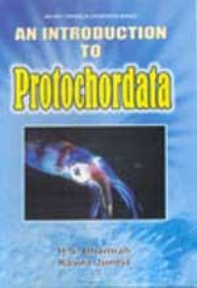 An Introduction to Protochordata
