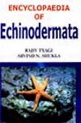 Encyclopaedia of Echinodermata (In 3 Volumes)