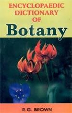 Encyclopaedic Dictionary of Botany (In 3 Volumes)