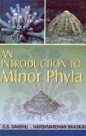An Introduction to Minor Phyla