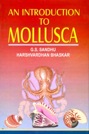 An Introduction to Mollusca
