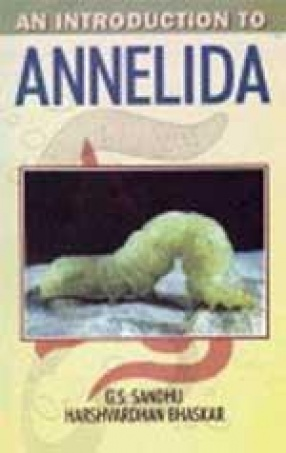 An Introduction to Annelida