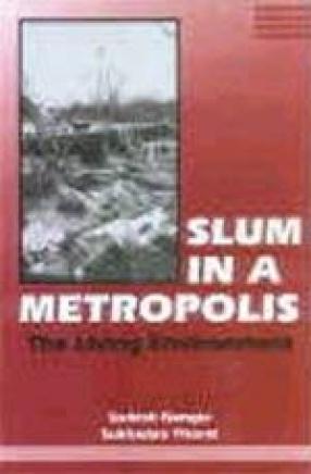 Slum in a Metropolis: The Living Environment