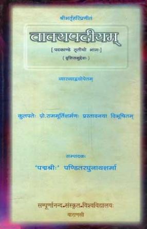 Vakyapadiyam: Pada-Kanda (Part III)