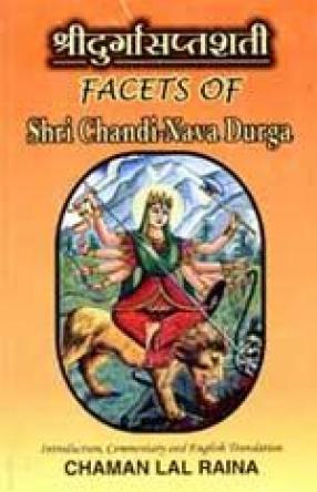 Facets of Shri Chandi-Nava Durga