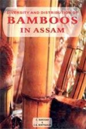 Diversity and Distribution of Bamboos in Assam