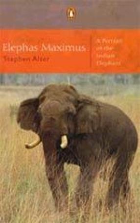 Elephas Maximus: A Portrait of the Indian Elephant