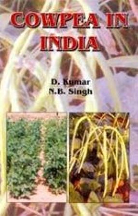 Cowpea in India