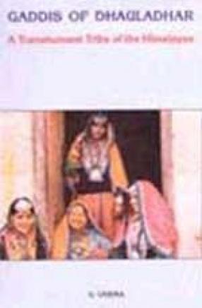 Gaddis of Dhauladhar: A Transhument Tribe of the Himalayas