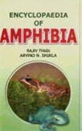 Encyclopaedia of Amphibia (In 3 Volumes.)