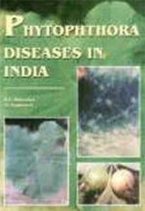 Phytophthora Diseases in India