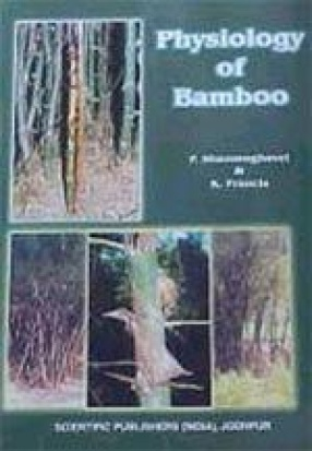 Physiology of Bamboo