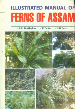 Illustrated Manual of Ferns of Assam