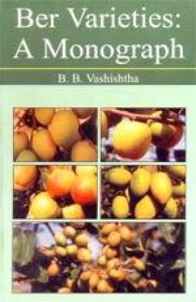 Ber Varieties: A Monograph