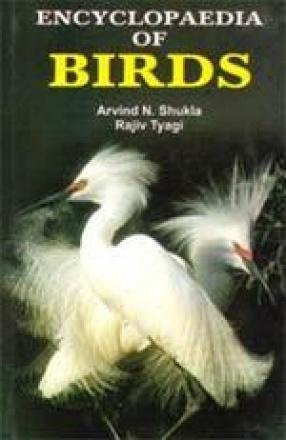 Encyclopaedia of Birds (In 3 Volumes)