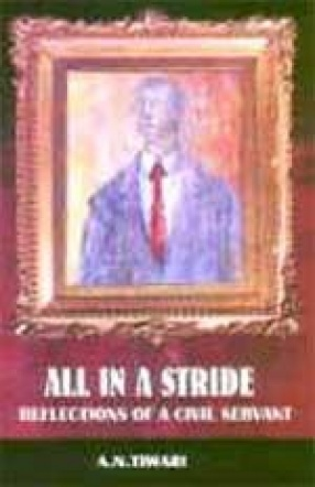 All in a Stride: Reflections of a Civil Servant
