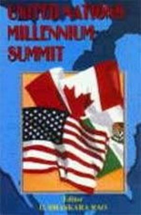 United Nations Millennium Summit