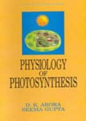 Physiology of Photosynthesis