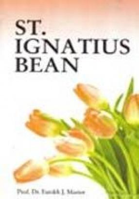 St. Ignatius Bean