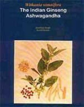 Withania somnifera: The Indian Ginseng Ashwagandha