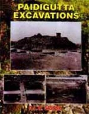 Paidigutta Excavations