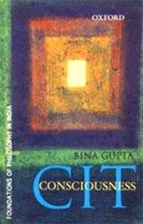CIT: Consciousness