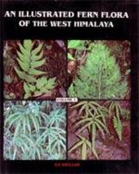 An Illustrated Fern Flora of the West Himalaya (Vol. 1)