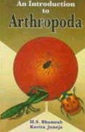 An Introduction to Arthropoda