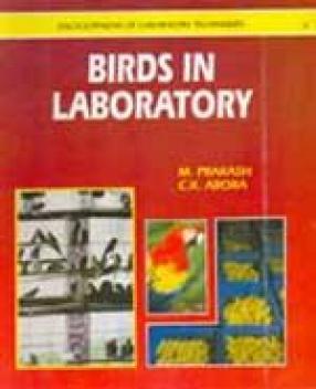 Birds in Laboratory